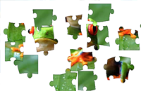 Tree Frog Puzzle